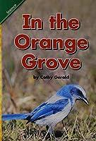 Reading 2008 Concept Literacy Leveled Reader Grade K.2.2 in the Orange Grove