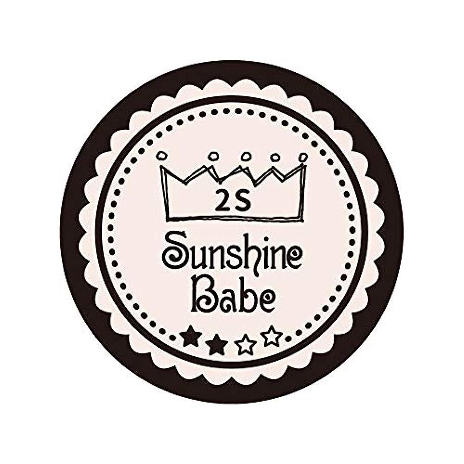 キャプションベジタリアン橋脚Sunshine Babe カラージェル 2S オールモーストモーブ 2.7g UV/LED対応