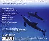 Dolphin Dreams 画像