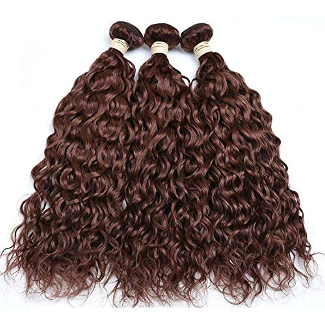 ピストン面コーデリアHOHYLLYA ブラジルの髪の束ブラジルの水の波100%未処理の本物の人間の髪の毛#33ブラウン色(8