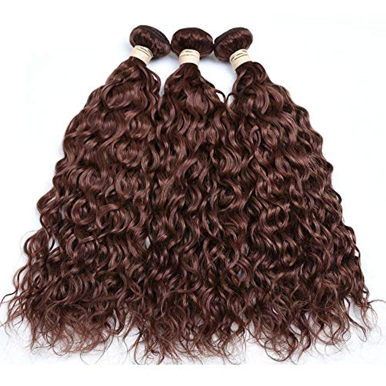 キリストビルダーの配列HOHYLLYA ブラジルの髪の束ブラジルの水の波100%未処理の本物の人間の髪の毛#33ブラウン色(8