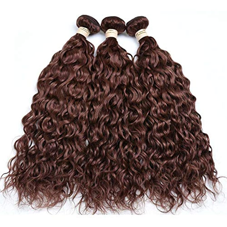 知覚的引き渡す人WASAIO 100グラム)、1つのバンドル、ブラジルの髪のバンドル拡張クリップUnseamed水波未処理の本物の人間のブラウン色(8「-28」 (色 : ブラウン, サイズ : 8 inch)