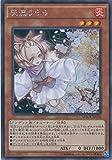 遊戯王 灰流うらら(シークレットレア) マキシマム・クライシス(MACR) シングルカード