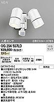 オーデリック エクステリアライト 【OG 254 557LD】【OG254557LD】