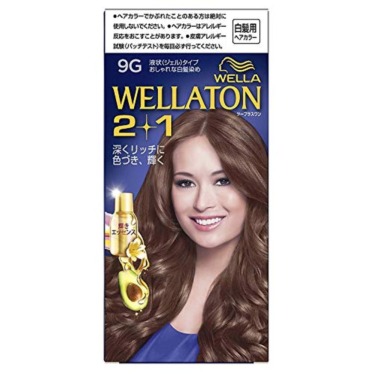 注文滴下説明的ウエラトーン2+1 液状タイプ 9G [医薬部外品] ×6個
