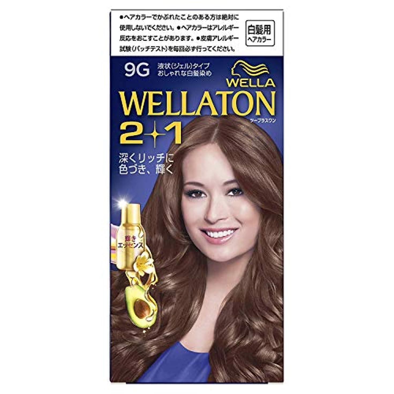 受益者ええ作動するウエラトーン2+1 液状タイプ 9G [医薬部外品] ×6個