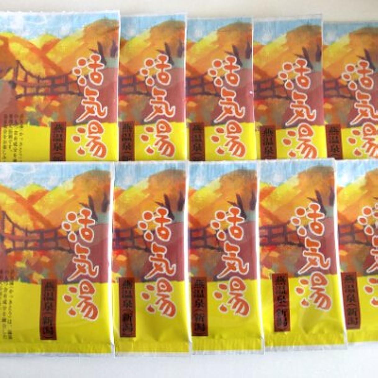 現実これら普遍的な活気湯 燕温泉(シトラス) 10包セット
