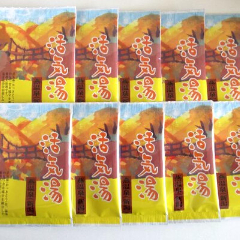 一般的に髄ミケランジェロ活気湯 燕温泉(シトラス) 10包セット