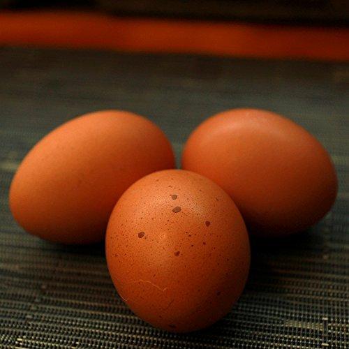 おいしい赤卵 (80個入り)