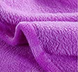 ひざ掛け マイクロファイバー ブランケット 毛布 100×70cm 超 気持ちいい 多彩なカラーバリエーション 選べる 10色 (パープル)