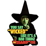 Magnet - Wizard of Oz - Witch Wicked Gifts Toys Licensed 95328