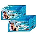 ハワイお土産 ハワイアンホリデー マカデミアナッツ チョコレート ドルフィン紙袋付き 12箱セット