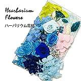 ハーバリウム 花材セット (ブルー)