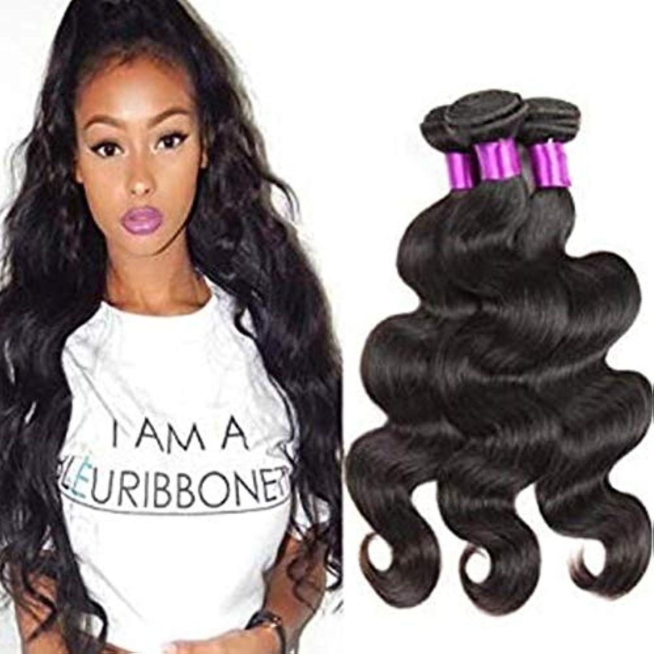 添加豊富びっくりしたHOHYLLYA 実体波巻き毛ブラジル100%未処理人毛エクステンション - ナチュラルブラック(10