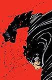 Absolute Dark Knight (Batman)