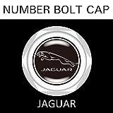 【JAGUAR】【ナンバープレート用】ジャガー ナンバーボルトキャップ NUMBER BOLT CAP 3個入りセット タイプ1 ブラガ - 2,500 円