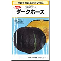 カボチャ 南瓜 種子 ダークホース かぼちゃ (11粒)