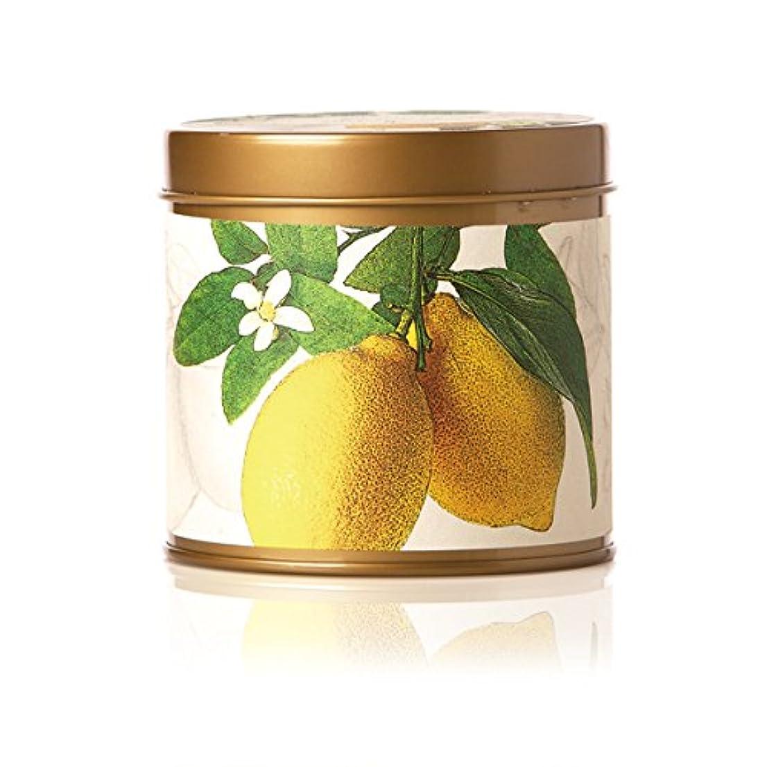 猫背リスト幾何学ロージーリングス ティンキャンドル レモンブロッサム&ライチ ROSY RINGS Signature Tin Lemon Blossom & Lychee