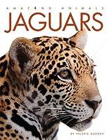 Amazing Animals: Jaguars