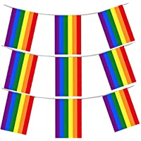 Haobase 20 Flags Gay Pride Flag Buntings Rainbow Banner for LGBT Pride Party Decoration Banner 10M/33Feet