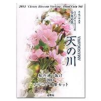 平成25年(2013) 桜の通り抜け プルーフ貨幣セット コイン 鏡面仕上