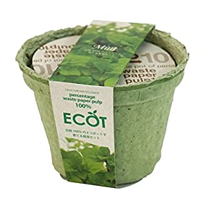 エコットS ミントの関連商品4
