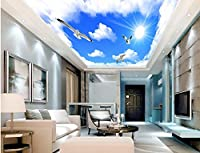 Wapel 3 次元の壁紙の壁画の青い空と白い雲シーガル天井 3 d の壁紙のリビングルームは家の装飾 絹の布 300x210CM