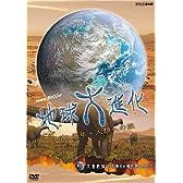 NHKスペシャル 地球大進化 46億年・人類への旅 第4集 大量絶滅 巨大噴火がほ乳類を生んだ [DVD]