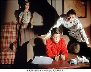 ビガー・ザン・ライフ 黒の報酬 [DVD]