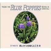 青いケシの咲くところ (3)