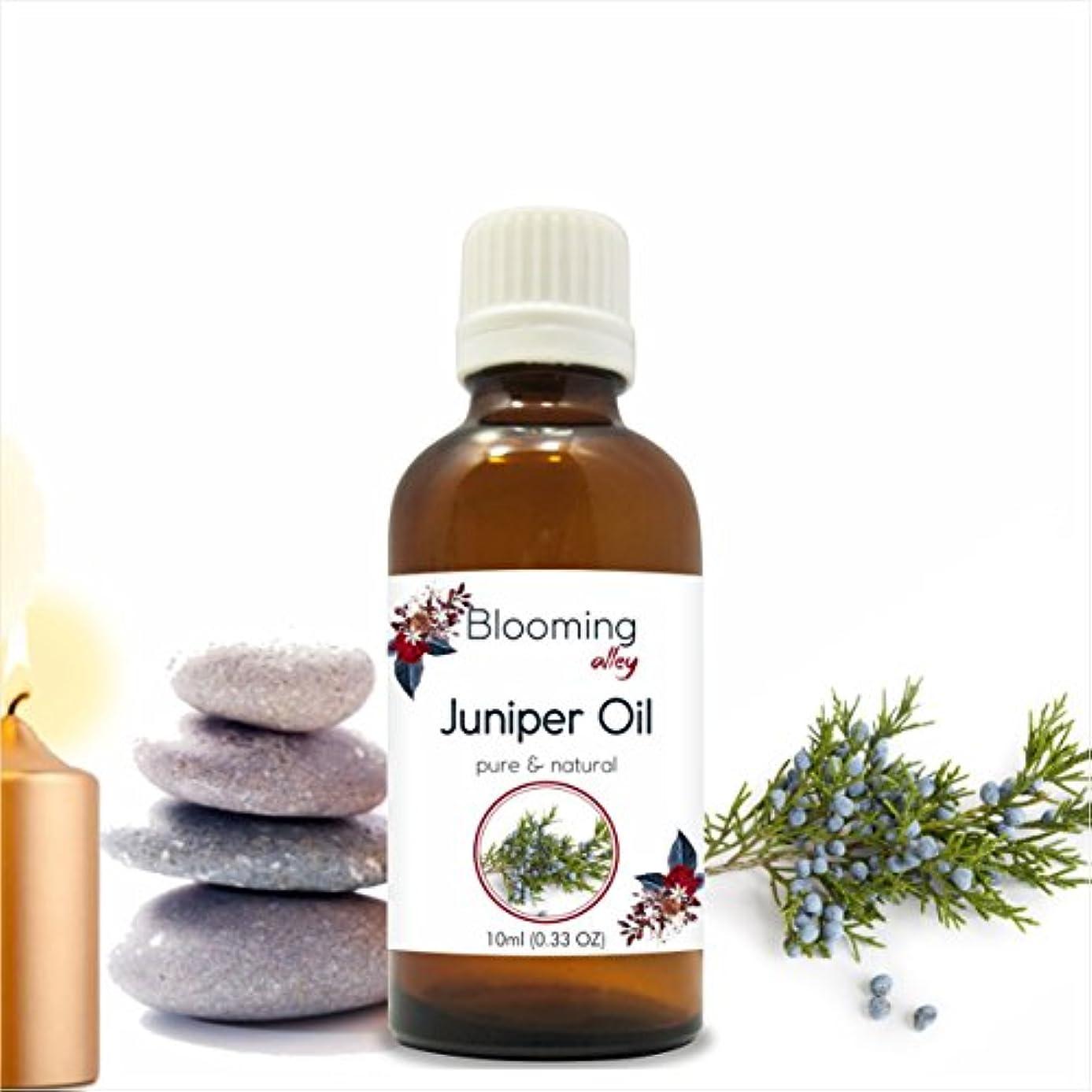 湿った終わらせる浮浪者Juniper Oil (Juniperus Communis) Essential Oil 10 ml or 0.33 Fl Oz by Blooming Alley