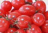濃厚フルーツミニトマト【甘っこ】 (1kg箱入り)