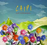 CAIPI 画像