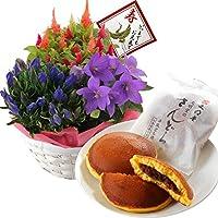 敬老の日ギフト 秋の3種寄せカゴ 文明堂 どら焼き セット 花とスイーツ フラワーギフト