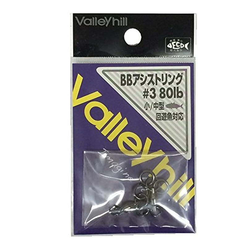 肥満文ポンドバレーヒル(ValleyHill) BBアシストリング #3