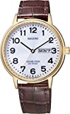 [シチズン]CITIZEN 腕時計 REGUNO レグノ ソーラーテック スタンダード ペア 10気圧防水 デイ&デイトモデル KH5-421-90 メンズ