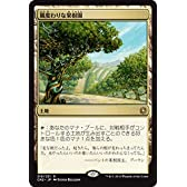 マジック・ザ・ギャザリング 風変わりな果樹園(レア) / コンスピラシー:王位争奪(日本語版)シングルカード CN2-219-R
