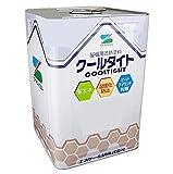 エスケー化研 水性フッ素屋根用遮熱塗料 水性クールタイトフッソ 15kg CLR-144