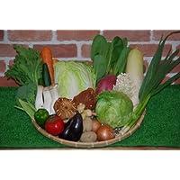 【わけあり】ボリューム満点!!高知の新鮮野菜詰め合わせセット【20品+】