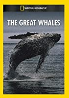 Great Whales [DVD] [Import]