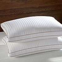 Basic Beyond White Goose Down Pillow, Gusseted,700 Fill Power TENCEL Cotton fabric,White, Standard Size,Set of 2 [並行輸入品]