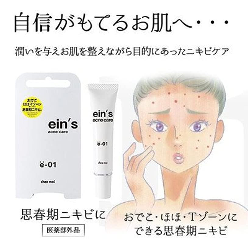 結果叫び声スラム潤いを与え お肌を整えながらニキビケア ein's アインス acne care アクネケア e-01 思春期ニキビ 医薬部外品 15g