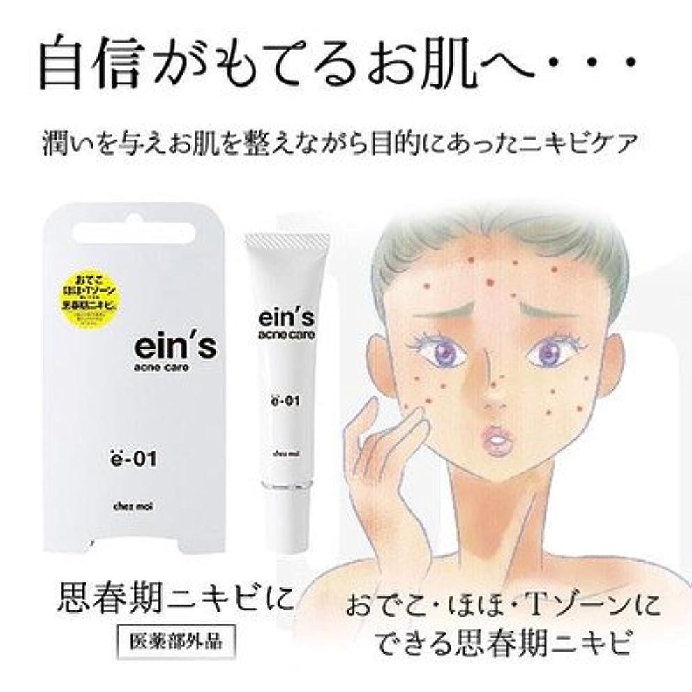 背景ビザ等潤いを与え お肌を整えながらニキビケア ein's アインス acne care アクネケア e-01 思春期ニキビ 医薬部外品 15g