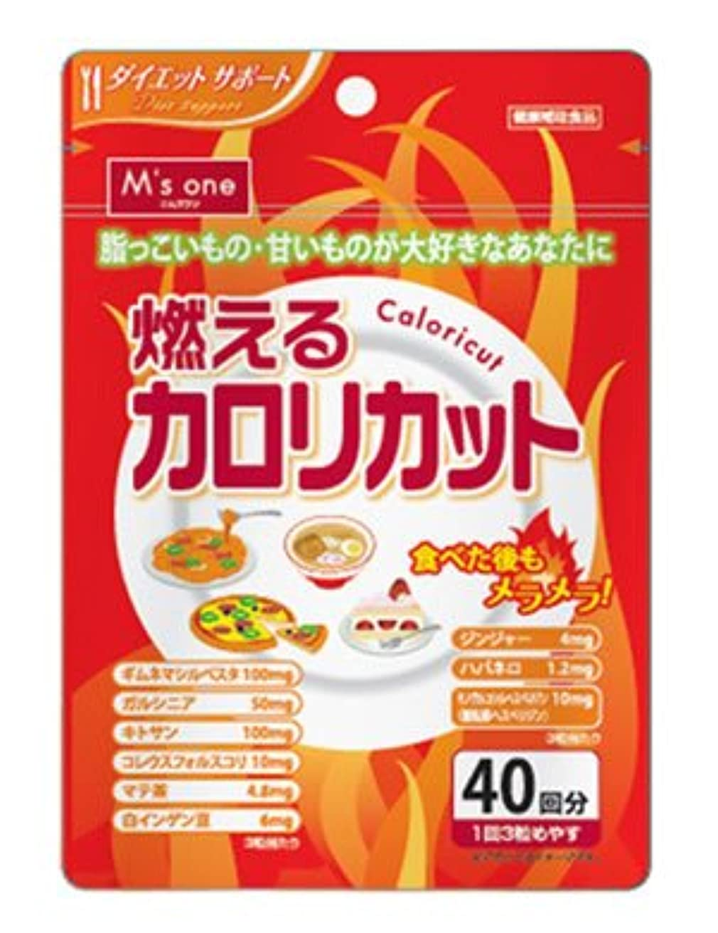 ミシンビスケットであるエムズワン 燃えるカロリカット ダイエットサポート サプリメント 健康補助食品 (40回分)