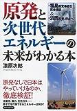 原発と次世代エネルギーの未来がわかる本 (洋泉社MOOK)