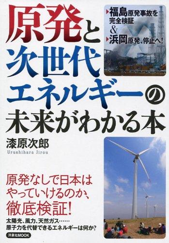 原発と次世代エネルギーの未来がわかる本 (洋泉社MOOK)の詳細を見る