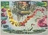 歴史的な地図 | The Voyage of The Pequod from The Book Moby Dick by Herman Melville, 1956 | ヴィンテージポスターアート壁飾り | 44in x 32in 5174429_4432_OSH