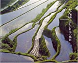 たんぼ美しい日本の風景