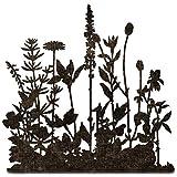 Sizzix Thinlits Die Flower Field by Tim Holtz、665369、マルチカラー