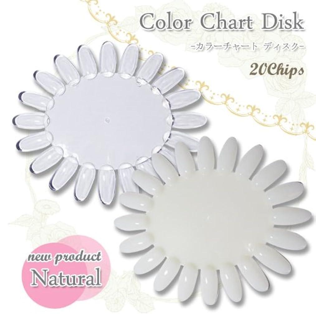 【ネイルツール】カラーチャートディスク〈 20色用 〉カラー見本作成の必需品! (クリア)